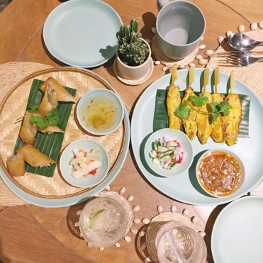 Vegetable spring rolls and chicken satay